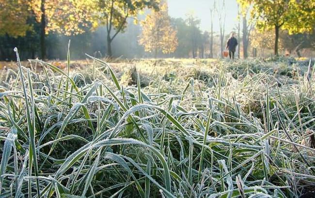 Прикарпатців попереджають про заморозки та посилення вітру