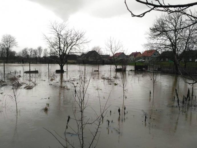 Рівень води в річках Тиса і Латориця майже досяг рівню 2001 року, коли паводок став для області катастрофою