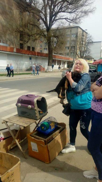 У Франківську влаштували пекло для тварин: зоозахисники скликають мітинг (фото)