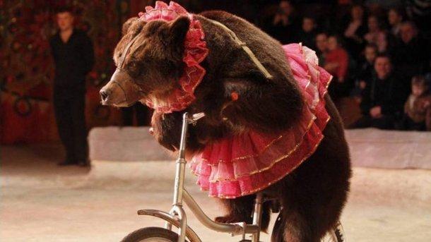 Пересувні цирки з тваринами можуть зникнути з вулиць Івано-Франківська (фоторепортаж)