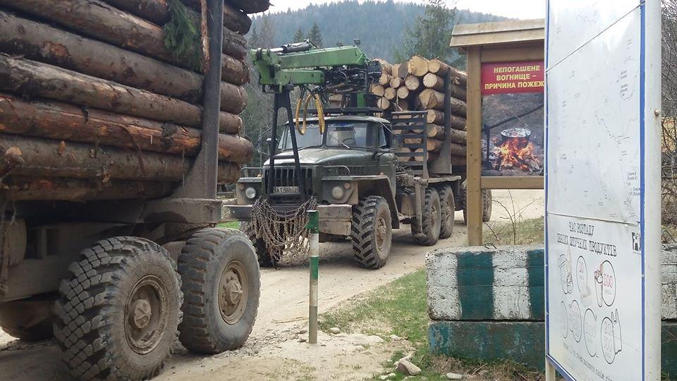 Прикарпатські ветерани АТО намагаються патрулювати зони вирубки лісів у Карпатах (фоторепортаж)