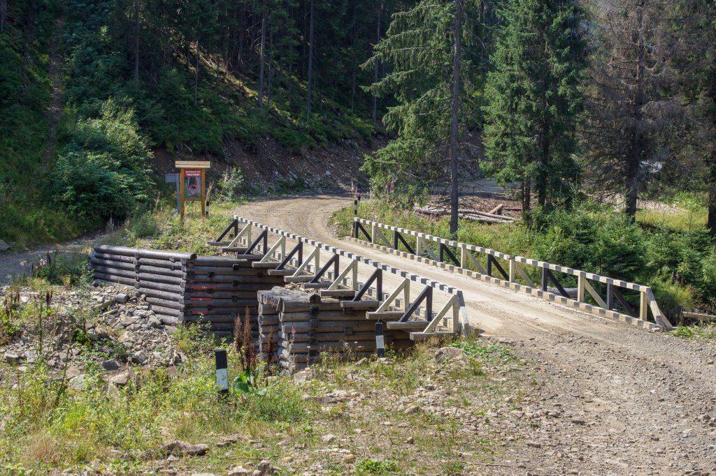 Осмолодський лісгосп похвалився досягненнями в дорогобудуванні (фотофакт)