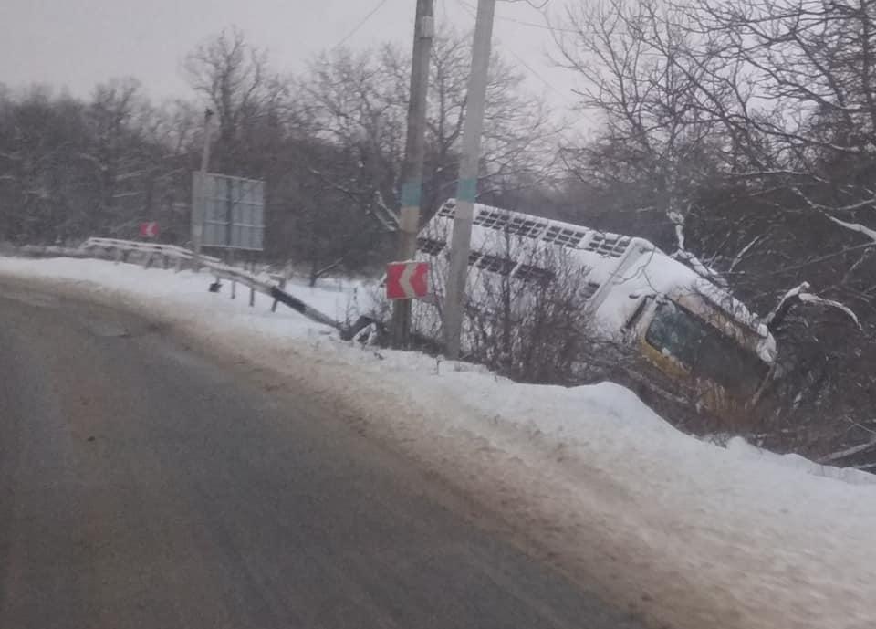 В прикарпатському містечку, вантажівка, яка перевозила свині, злетіла із дороги (фотофакт)