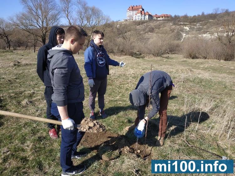 Франківська молодь самотужки облагороджувала територію біля дамби у Вовчинці (фоторепортаж)